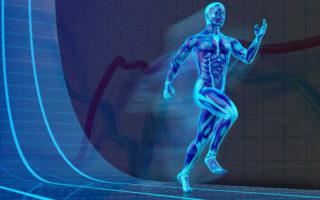 Физическая трансформация людей
